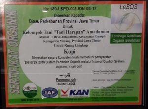 1 sertifikat kopi lesos